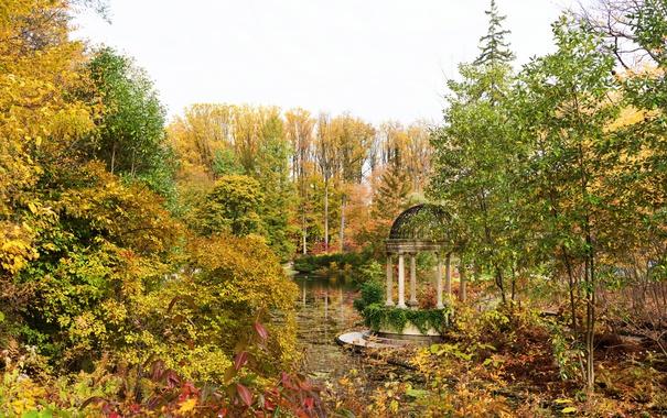 Фото обои осень, листья, деревья, пруд, парк, США, беседка