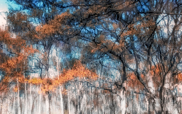 Фото обои природа, фон, цвет, Watercolour