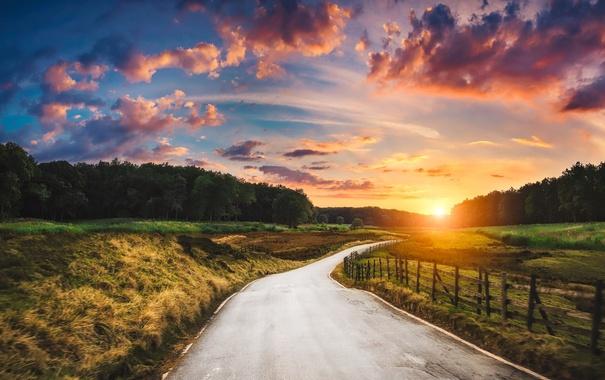 Фото обои дорога, забор, утро