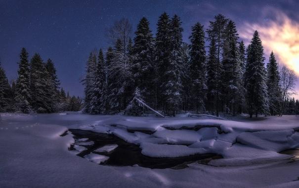 Фото обои зима, снег, ночь