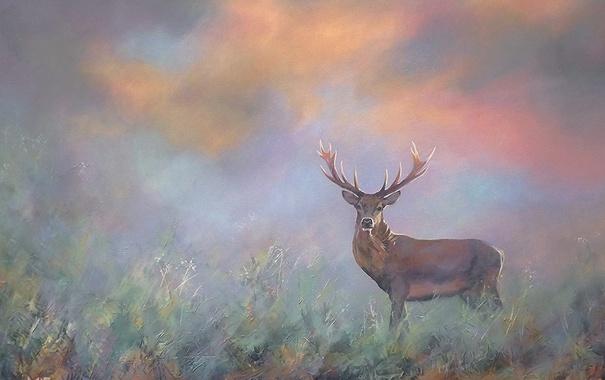 Фото обои природа, фон, рога, Лось