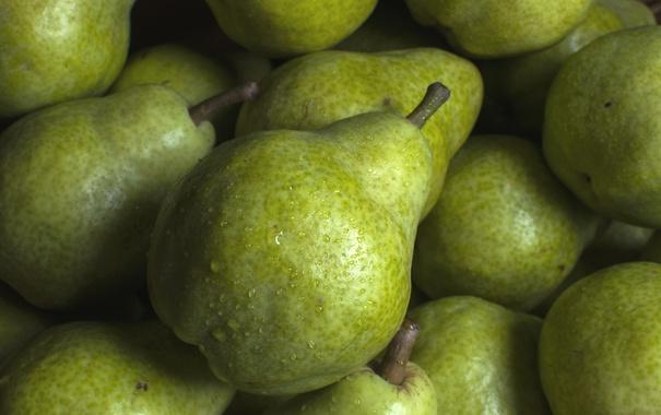 Фото обои макро, фрукт, груша, плод