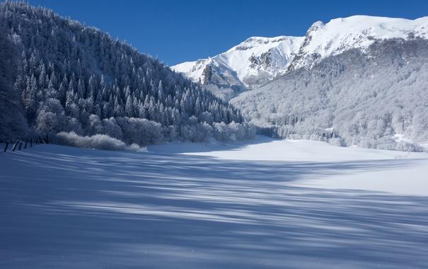 Фото обои зима, лес, снег, горы, Франция, тени, France