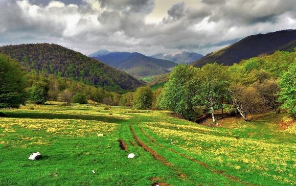 Фото обои трава, деревья, горы, Италия, Ломбардия