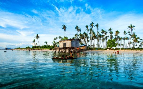 Фото обои песок, море, тропики, пальмы, берег, остров, Малайзия