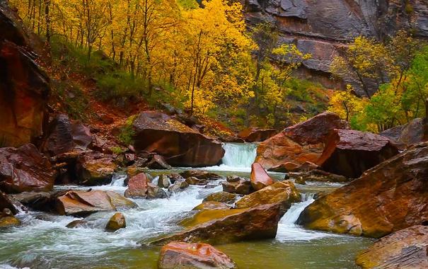Фото обои осень, деревья, камни, скалы, Юта, США, Сион Каньон