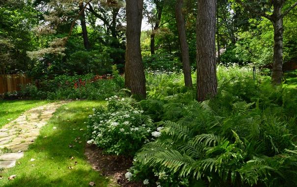 Фото обои зелень, трава, деревья, цветы, парк, забор, дорожка