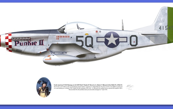 Фото обои aircraft, illustrations, p 51d mustang