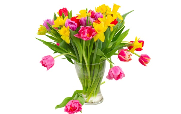 Фото обои colorful, тюльпаны, flowers, tulips, bouquet