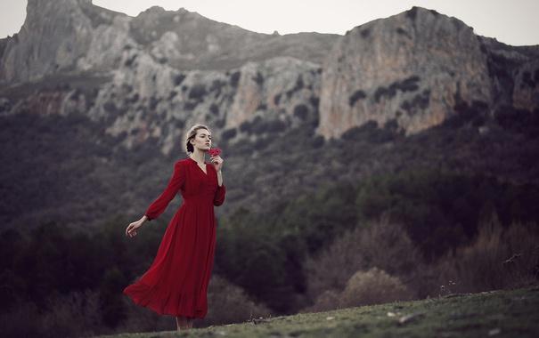 Фото обои цветок, девушка, природа, платье