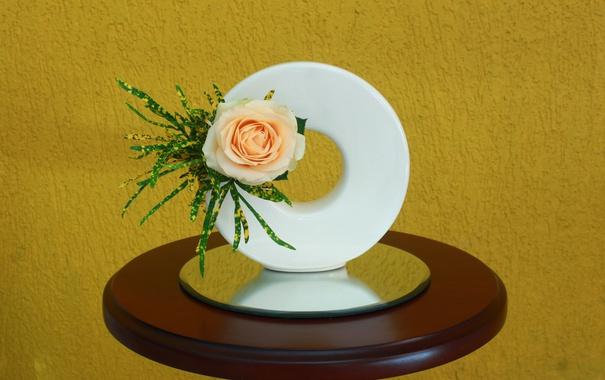 Фото обои роза, бутон, композиция, икебана