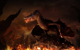 Обои fire, dragon, reptile