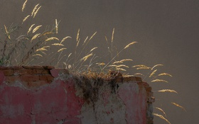 Обои трава, фон, стена