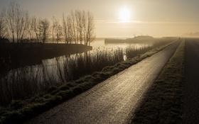 Картинка дорога, туман, утро, канал