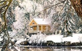 Обои снег, деревья, домик