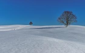 Картинка зима, дорога, снег, деревья, холмы, Германия, Бавария