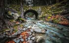 Обои лес, деревья, мост, природа, река, камни, Франция