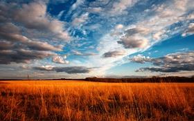 Обои поле, небо, облака