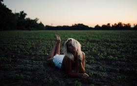 Картинка девушка, закат, блондинка