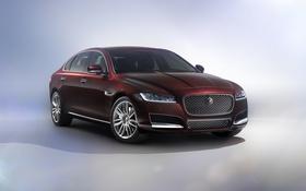 Картинка фон, Jaguar, ягуар, седан, Sedan, XFL
