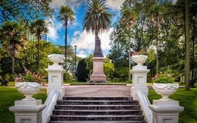 Обои парк, пальмы, газон, Австралия, лестница, памятник, скамейки
