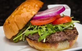 Обои лук, помидор, гамбургер, котлета, салат