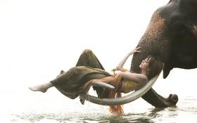 Картинка девушка, озеро, слон, бивни, Mahawangchang Elephant