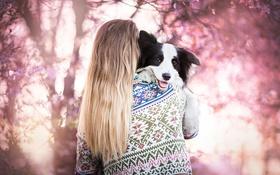 Обои сад, собака, девушка