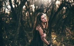 Обои девушка, ворона, Amy Spanos