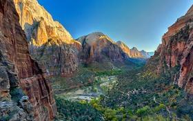 Обои деревья, горы, природа, река, скалы, каньон, ущелье