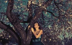 Картинка девушка, лицо, дерево, платье