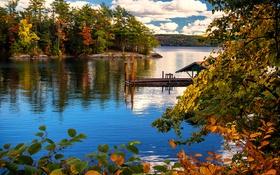 Обои лес, облака, деревья, озеро, берег, листва, Нью-Йорк