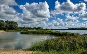 Обои песок, небо, трава, облака, деревья, река, камыши