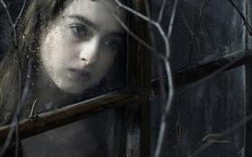 Обои девушка, портрет, окно