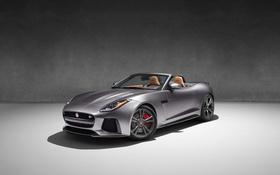 Обои серый, фон, Jaguar, ягуар, кабриолет, Convertible, F-Type