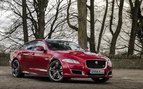 Обои Jaguar, ягуар, XJR