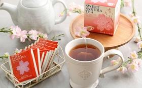 Обои сакура, чашка, напиток, черный чай