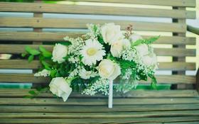 Обои цветы, скамейка, букет, белые