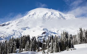 Обои зима, лес, небо, гора, домик, National Park, Mount Rainier