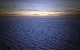 Обои поле, снег, ночь, туман