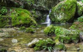 Картинка ручей, камни, водопад, мох, HDR, Италия, Veneto