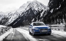 Картинка Audi, ауди, синяя, quattro