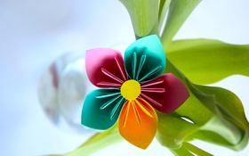 Обои цветок, листья, бумага, коллаж