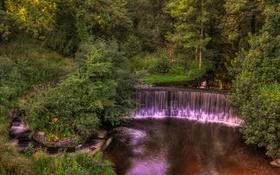 Картинка деревья, парк, ручей, Англия, водопад, кусты, Yarrow valley park