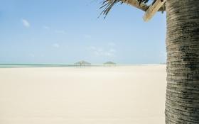 Обои пляж, лето, отдых