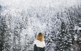 Обои девушка, снег, деревья