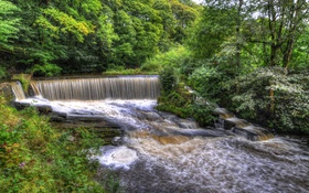 Обои деревья, парк, ручей, Англия, водопад, HDR, Yarrow valley park