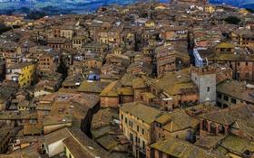 Обои дома, крыши, Италия, Сиена