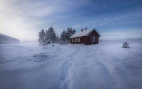 Обои зима, снег, деревья, Норвегия, домик