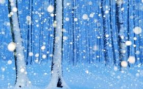 Картинка зима, лес, снег, деревья, парк, Германия, Нинхаген
